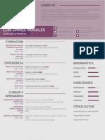 Modelo de Curriculum Medico 817 PDF Desbloqueado