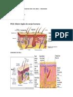 MATERIAL pele DE APOIO ANALISE DA FACE GR.pdf
