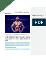 Creatina y Musculos