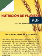 Nutrición de Plantas