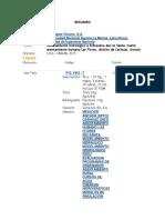P10.V443 T Resumen