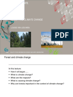Forest and Climate Change