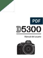 nikkon d5300