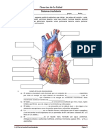 61551260-Nombre-Completo-Guia-Circulatorio-PARA-IMPRIMIR.docx