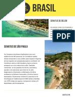 Informe Mundial Agosto 2018 Brasil