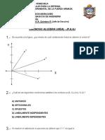 Prueba Diagnostica Algebra Lineal