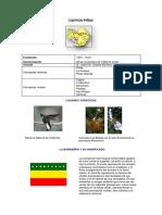 CANTON PIÑAS INFORMACION BASICA.docx