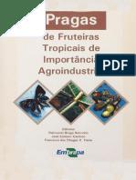 Pragas de Fruteiras Tropicais de importância Agroindustrial