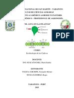 Elaguaenlasplantas 150508033914 Lva1 App6892 Convertido