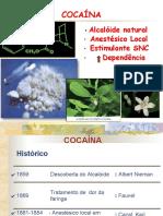 Toxicologia Farmacia Bioquimica Cocaina Toxicologia Social
