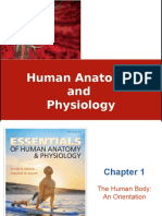 ch_01_The Human Body An Orientation.ppt