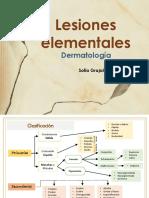 Lesiones Elementales en Dermatología