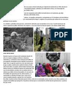 Terrorismo de Estado de Guatemala -- Caso Rio Negro + Caso molina  ++