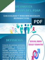Dimensiones Prioritarias Del Pdsp