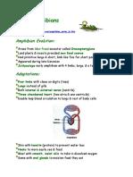 herp4.pdf