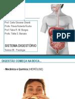 aula_3_-_adaptada_carla_-_fabi (1).pdf
