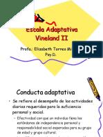 Escala Adaptativa Vineland