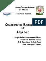 Algebra 2da parte.pdf