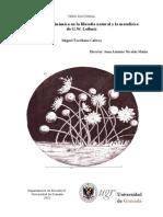 TESIS DOCTORALComplejidad y Dinámica en La Filosofía Natural y La Metafísica de G.W. Leibniz