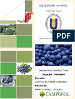 216344963-Exportacion-de-Arandano-Fresco-1.pdf