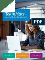 TeamMate+ Audit Brochure