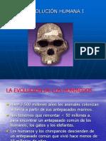 La Evolucion Humana Electivo