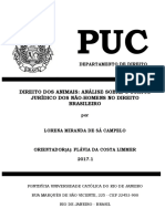 DIREITO DOS ANIMAIS - ANALISE SOBRE O STATUS JURIDICO DOS NÃO-HOMENS NO DIREITO BRASILEIRO