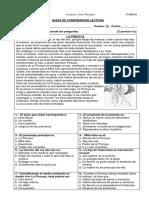 330802843-GUIA-La-Pincoya.docx