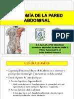 Anatomía de La Pared Abdominal - Exposición