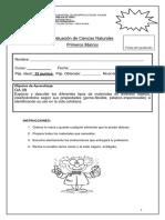 Evaluación de Ciencias Naturales Agosto 2019