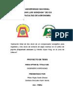 PLAN DE TESIS -SANTANA GONZALEZ.doc