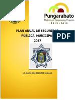 plan de seguridad publica municipal