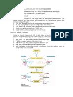 317879_regulasi Glikolisis Dan Glukoneogenesis