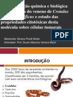 CARACTRIZAÇÃO  QUIMICA E BIOLOGIC DO VENENO DE CROTALUS  DURISSUS