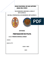 Informe de Preparacion de Pulpa