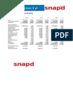 Group 3 - SNAP D P&L Projections