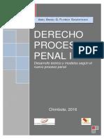 Derecho Procesal Penal I-2016