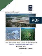 relatorio ambiente