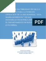 Factibilidad Hospitalaria.pdf