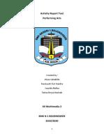 Activity Report Text