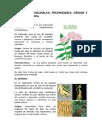 10 Planta Medicinales