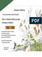 Bosques Maduros 2 Biodiversidad Schw 2016