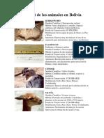 Hábitat de los animales en Bolivia.docx