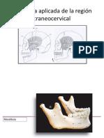 Clase 3 Anatomia aplicada de la region craneocervical DBIO 1058.ppt