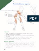 Anatomía Del Nadador