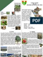 Diptico a4 Horizontal Flora y Fauna Del Peru