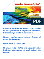 "O tal ""Fundo Amazônia"""