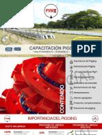 CAPACITACIÓN PIGS - ELASTÓMEROS PVM (00000003).pdf