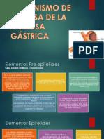 Mecanismo de Defensa de La Mucosa Gástrica