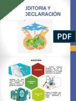 AUDITORIA Y AUTODECLARACIÓN (1).pptx